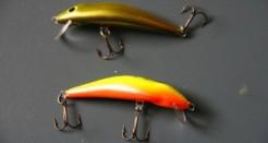 Dorado – Dead Fish